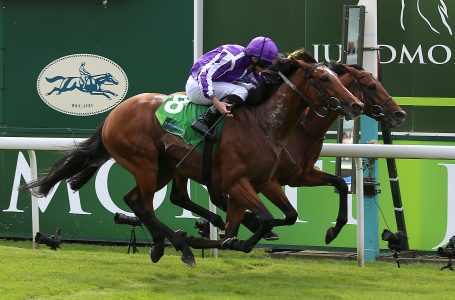 Delight for O'Brien as Japan delivers big-race glory