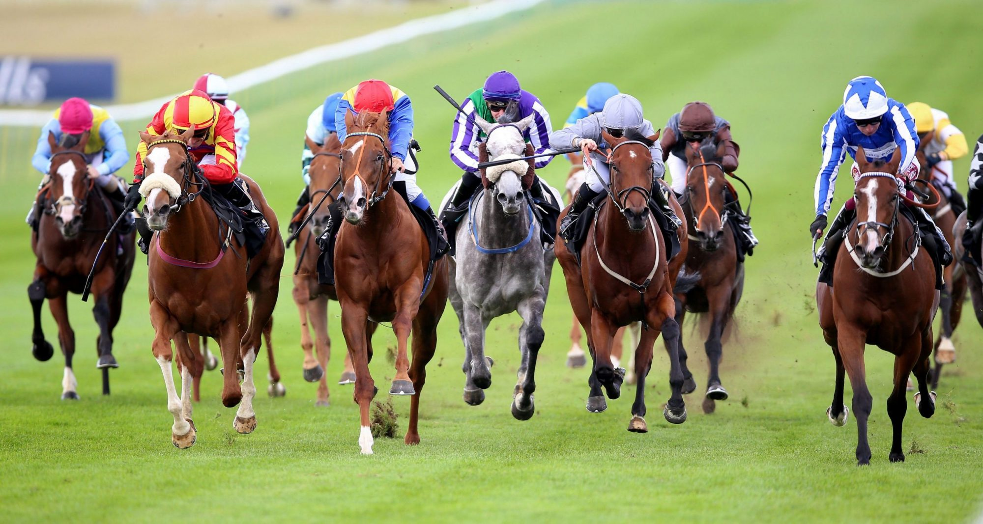 Sunday 29th March 2020 – Horse Racing Most Backed Selections