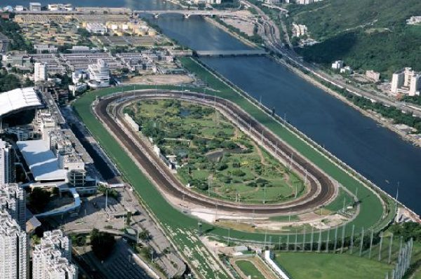 Wednesday 1st April 2020 – Horse Racing Most Backed Selections