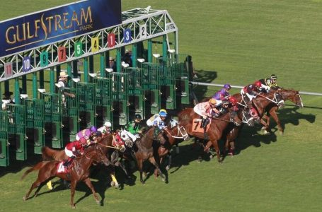 Saturday 23rd May 2020 – Horse Racing Most Backed Selections