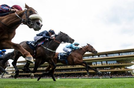 French horse racing set to resume on Monday
