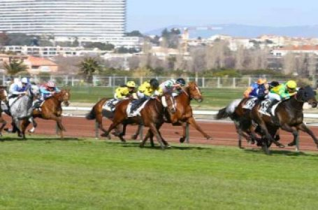 Monday 18th May 2020 – French Horse Racing Most Backed Selections