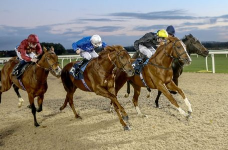Monday 1st June 2020 – Horse Racing Most Backed Selections