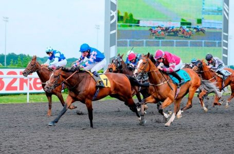 Tuesday 2nd June 2020 – Horse Racing Most Backed Selections
