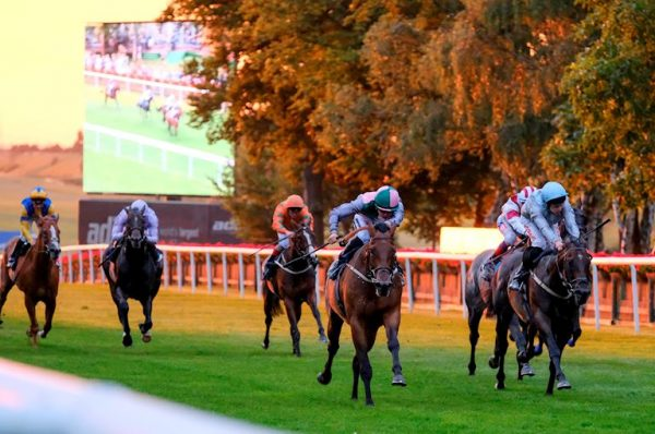 June Horse Racing: Most Backed Selections