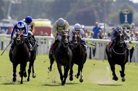 25th September Horse Racing: Most Backed Selections