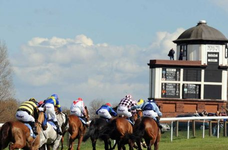 24th September Horse Racing: Most Backed Selections